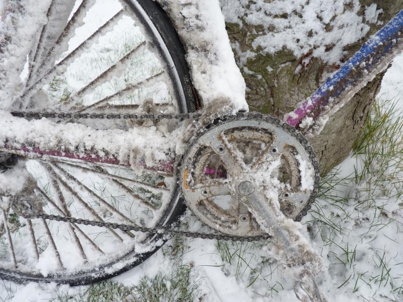 Alles eine Frage der Technik – Mr. Wildfang im Schnee